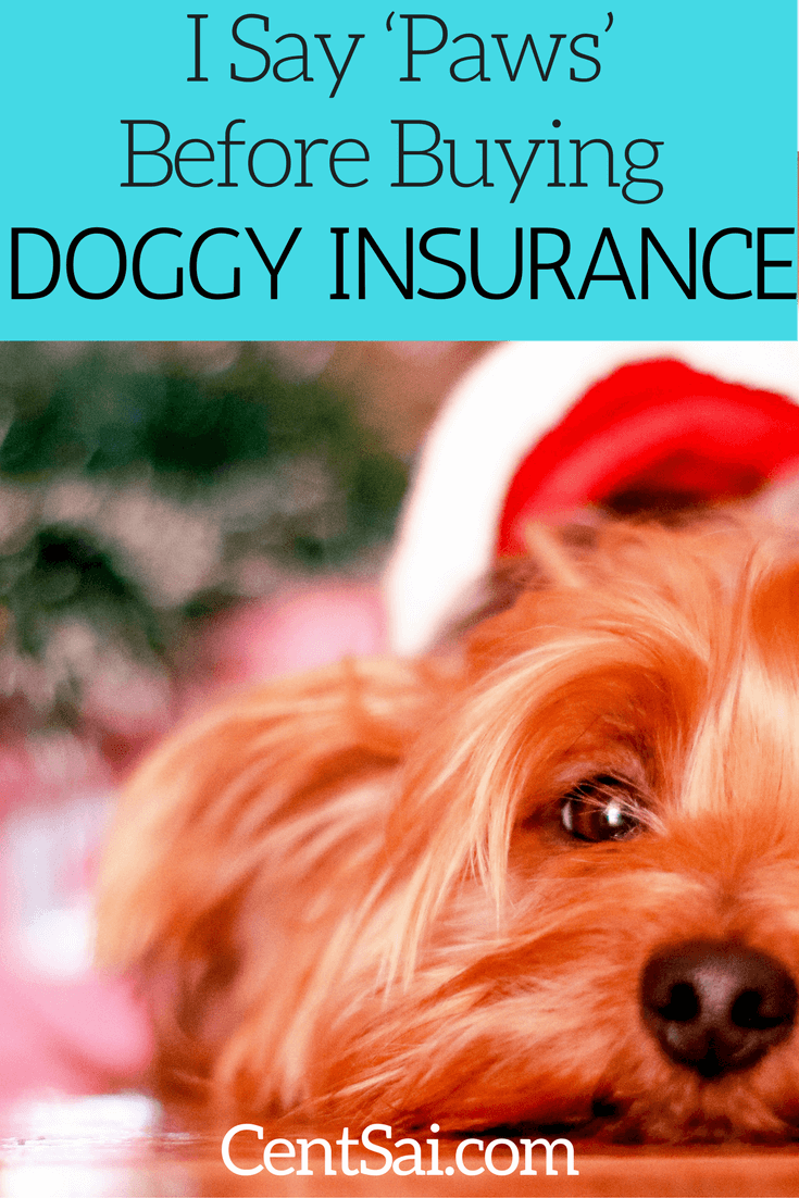Pet insurance isn't cheap, but can be useful in an emergency. Some people buy pet insurance to help offset the cost of veterinary bills from our furry family members.