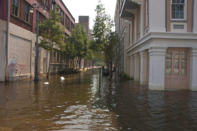 A Katrina Survivor Offers Actionable Wisdom To Help Baton Rouge