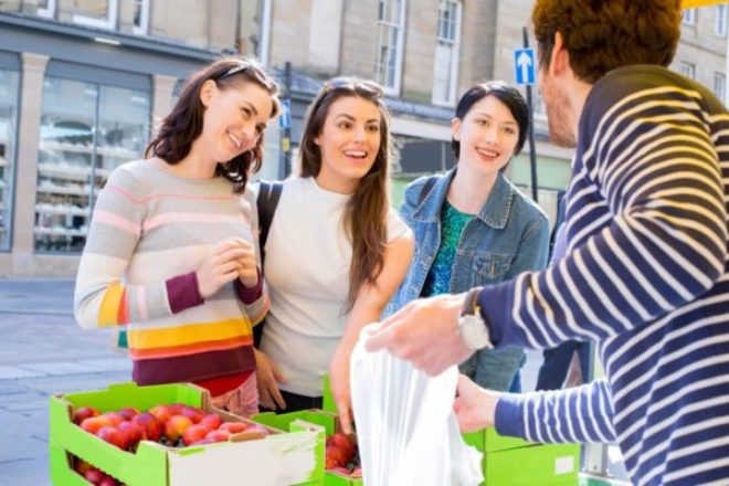 Frugal University 101: The Ultimate Guide to Cheap Grocery Runs in College