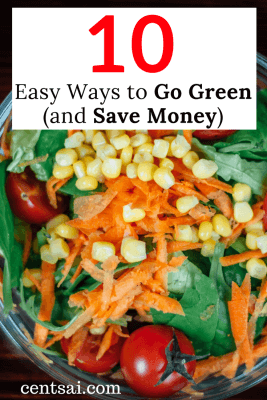 10 Easy Ways to Go Green (and Save Money). For Arbor Day, don't just plant a tree – go green! It's a win-win: save the planet while adding steadily to your savings.