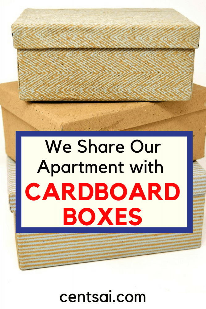 We Share Our Apartment with Cardboard Boxes. Moving from a house to an apartment can be difficult, but it's often necessary when you move to a more expensive area.