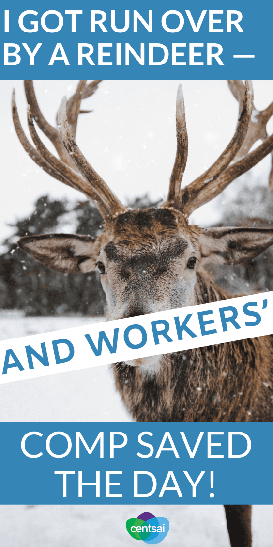 True story: Lindsay was injured on the job by a reindeer. Thanfully, workers' compensation had her covered. So how does workers' comp work? #career #insuranceblog