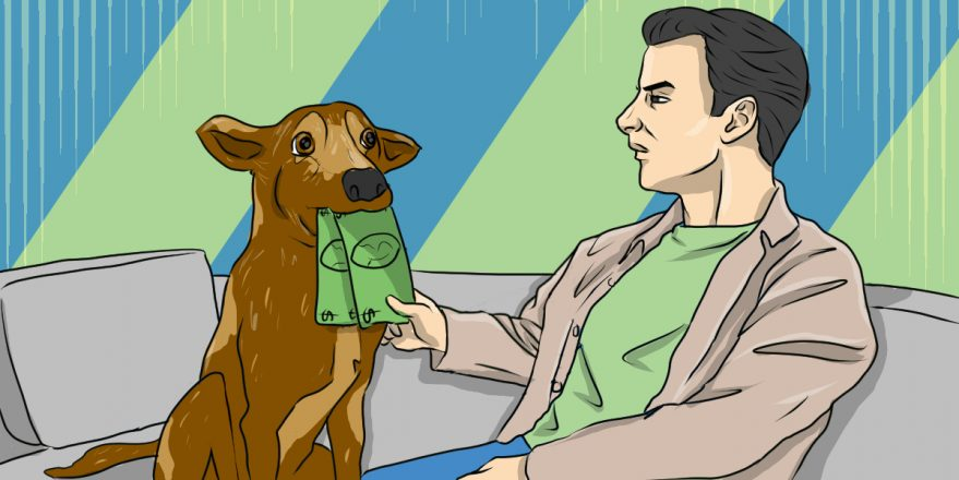 Affordable Pet Care: 4 Top Tips to Keep Fido Healthy