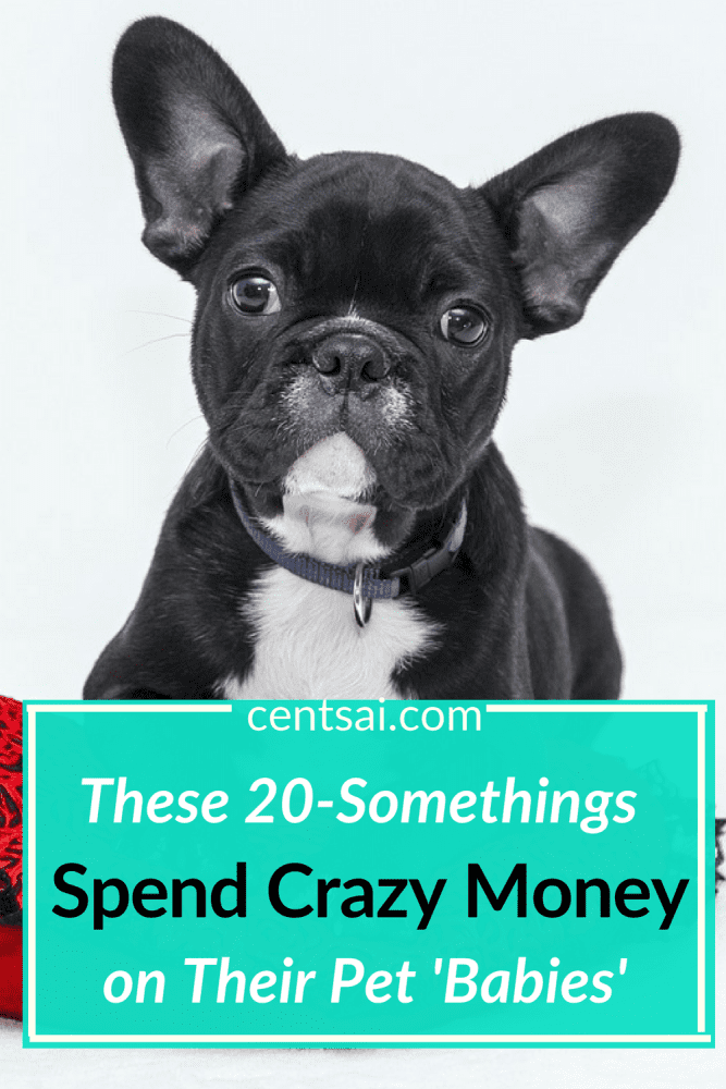 These 20-Somethings Spend Crazy Money on Their Pet'Babies'. Millennials are spending serious money on their fur babies, is it? Find out why... #crazymoneysavingtips #crazymoneysaving #spendcrazymoney #furbaby