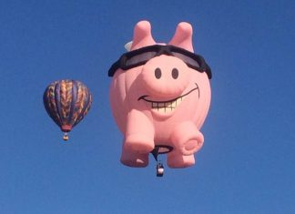 A Guide to Small-Business Retirement Plans   Albuquerque hot-air balloons   photo by Rita Pouppirt