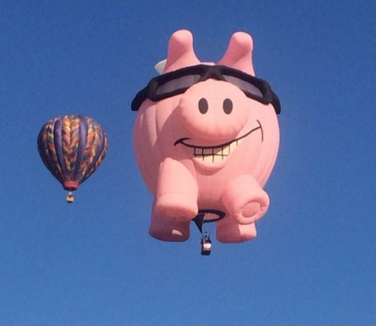 A Guide to Small-Business Retirement Plans | Albuquerque hot-air balloons | photo by Rita Pouppirt