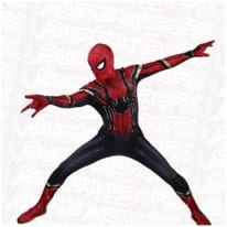 Expensive Spiderman Costume